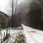 Strada della vecchia ferrovia, Meda – Ida Lucia Velo